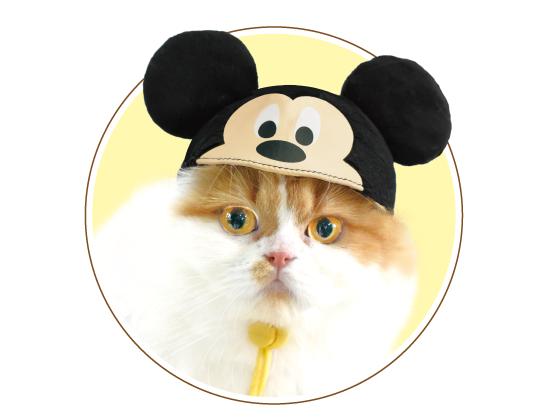 ネコス ミッキーマウス