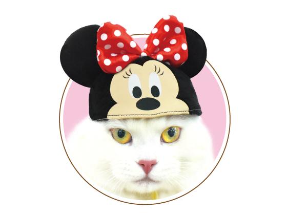 ネコス ミニーマウス